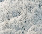 Zimný výlet 2019